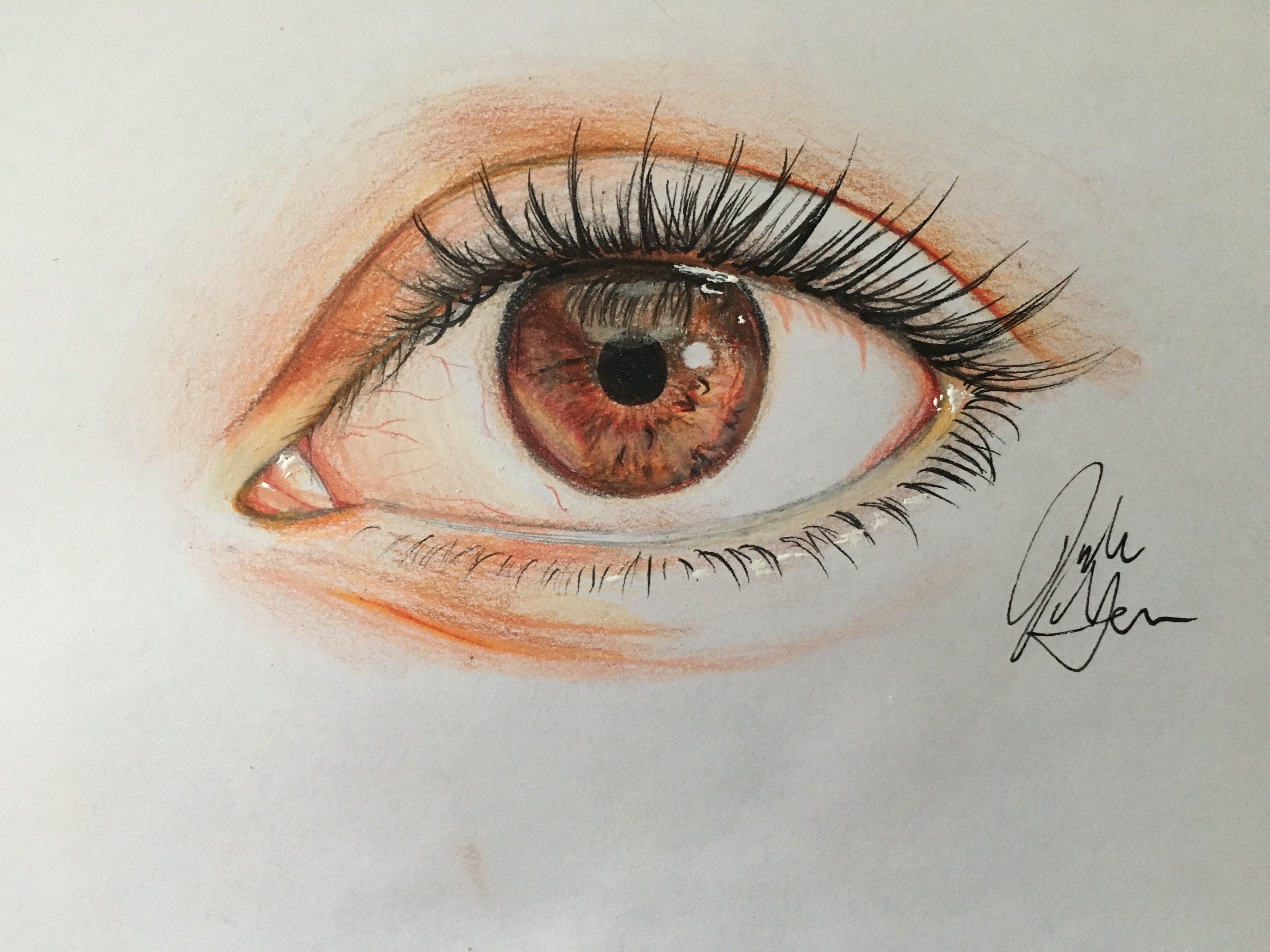 4032x3024 How To Draw An Eye In Colored Pencil (With Pictures)