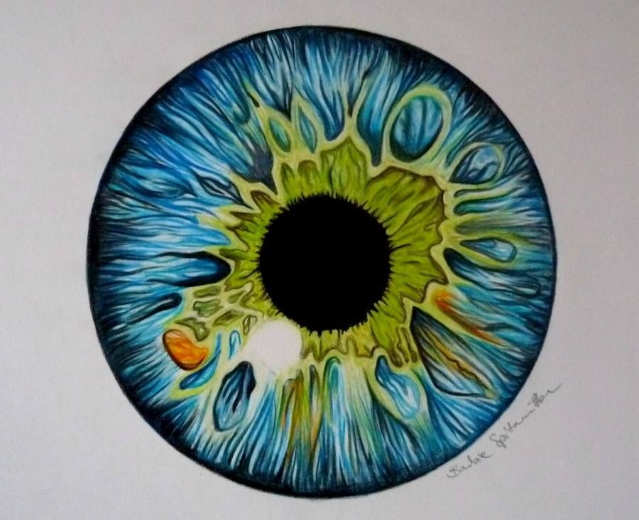 900x732 Colored Pencil Eye Drawing By Barbiespitzmuller