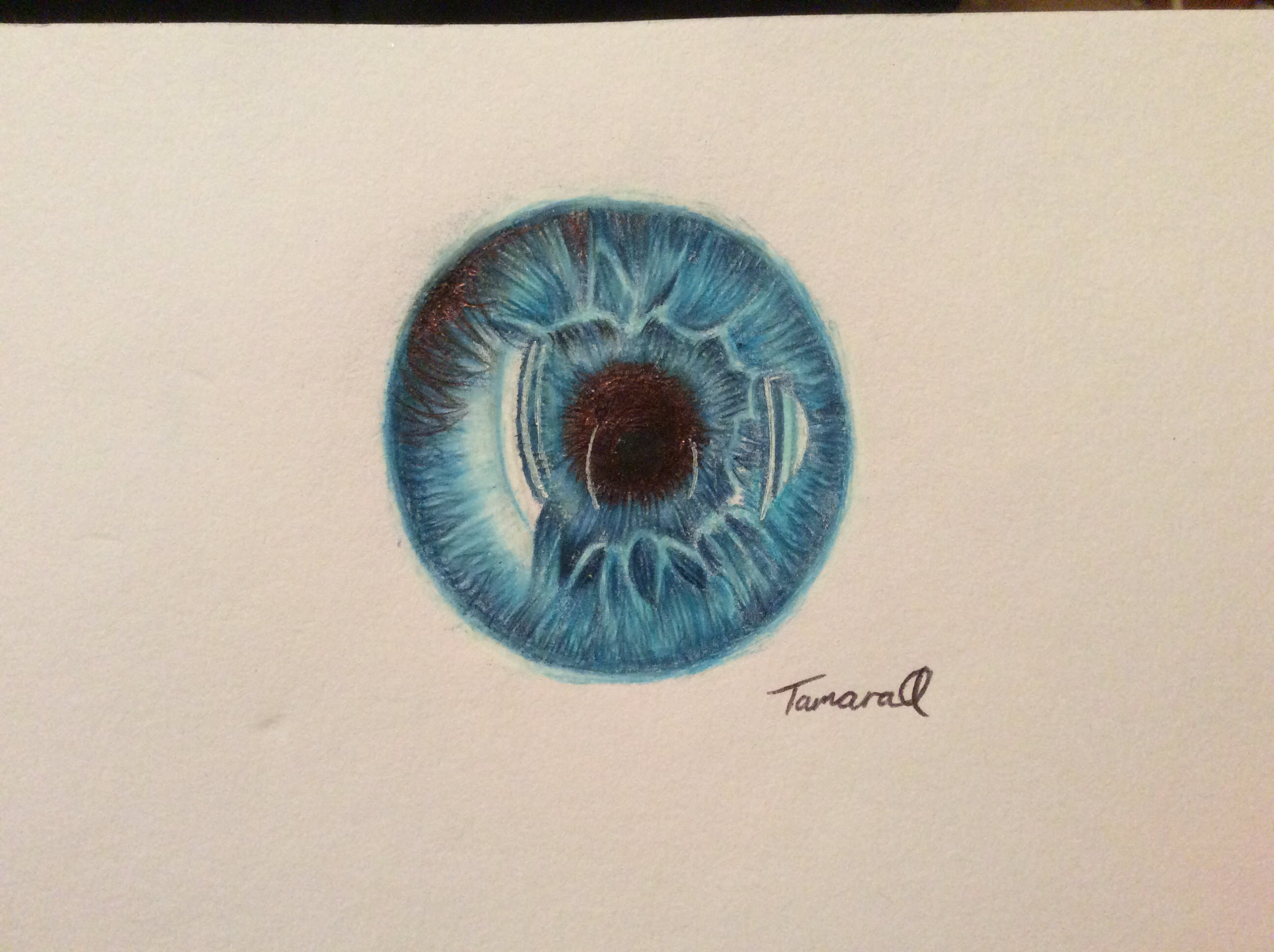 2592x1936 Eye (Iris) Speed Drawing