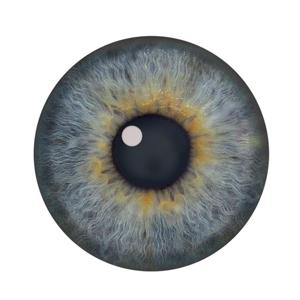 300x300 Jeff Searle Drawing The Eye