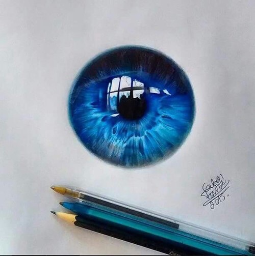 500x503 Pin By Steven Mauro On Art Eye, Coloured Pencils