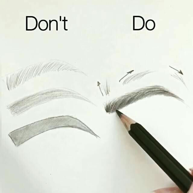 eyebrows drawing at getdrawings com free for personal use eyebrows