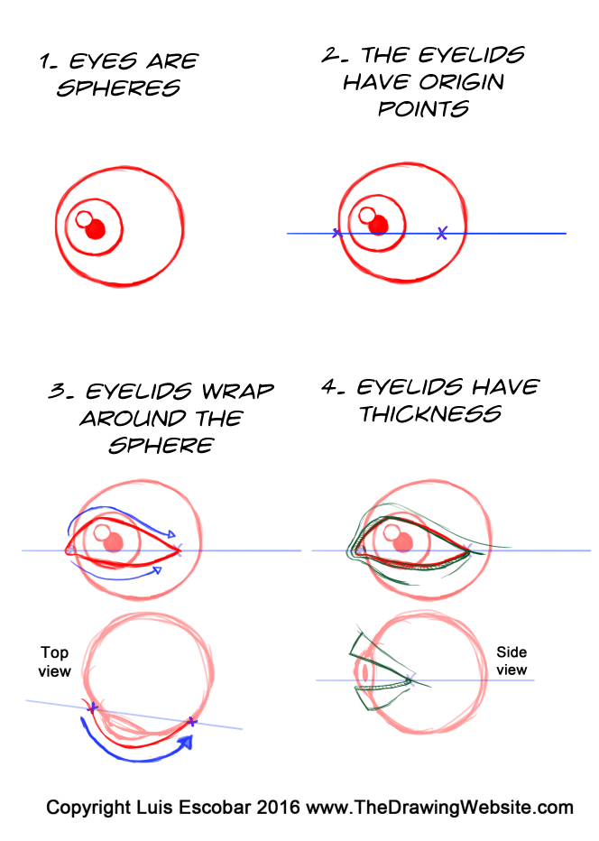 664x932 Cartoon Eye Formulasthe Drawing Website The Drawing Website