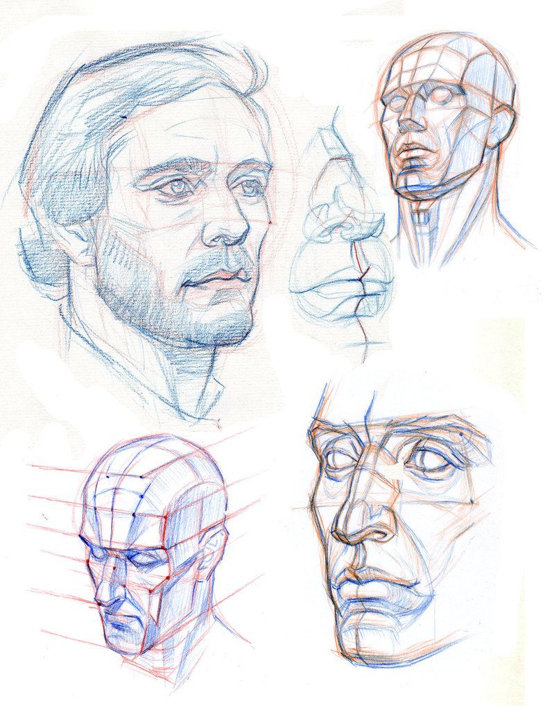 786x1017 The Head Construction Planes And Perspective By Abdonjromero