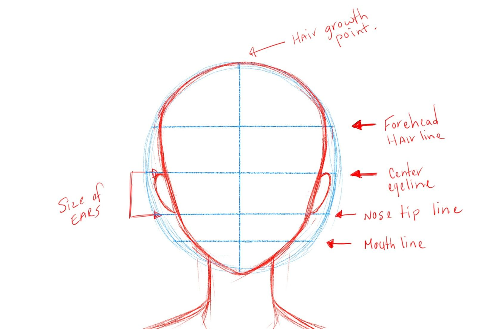 Face Drawing Template At Getdrawings Free For Personal Use
