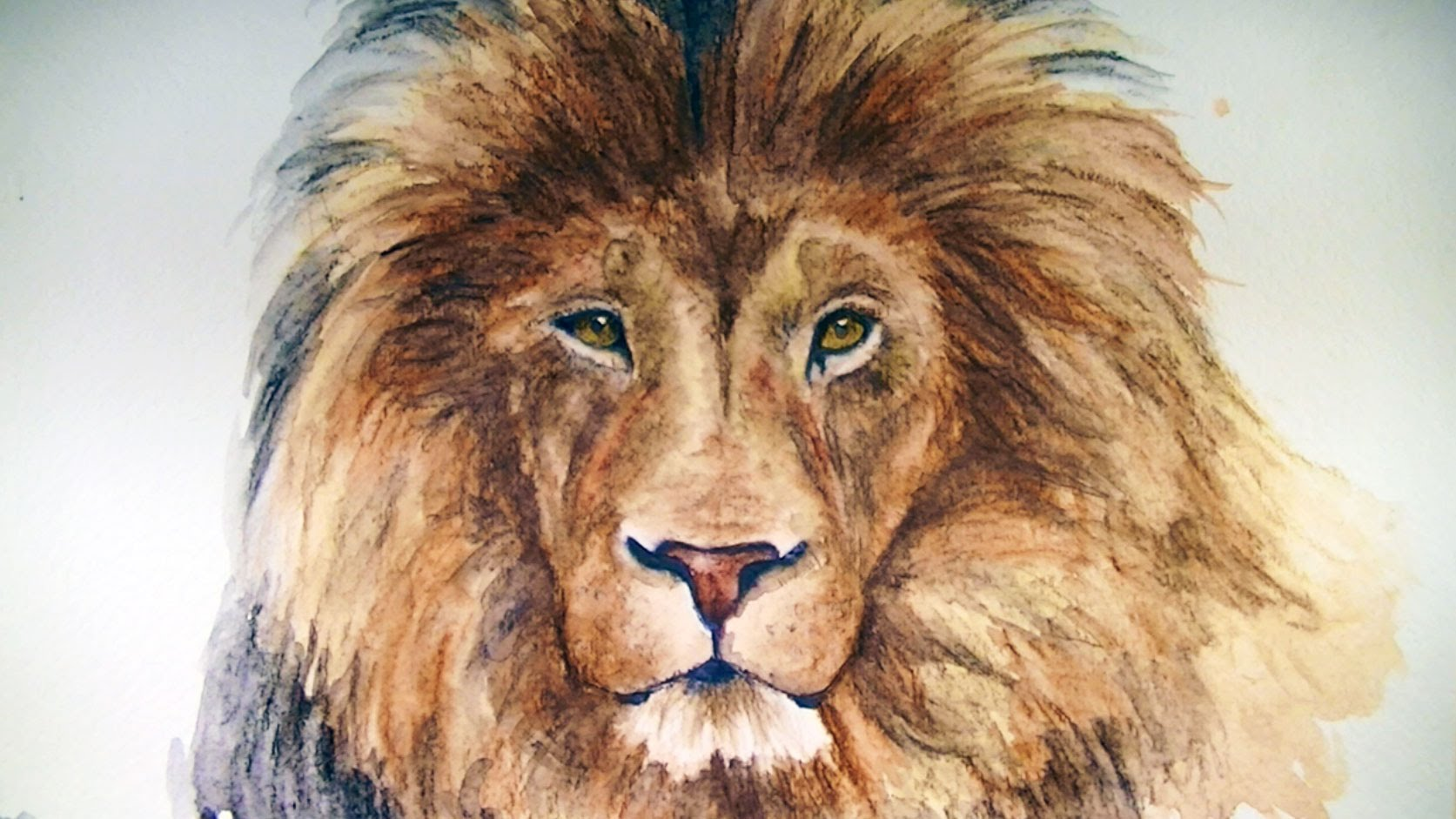 1673x941 How To Draw A Lion