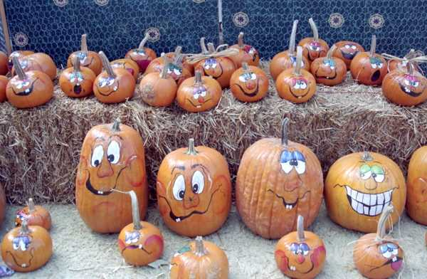 600x392 painted pumpkin faces pumpkins pinterest painted pumpkin
