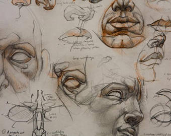 340x270 Face Study Etsy