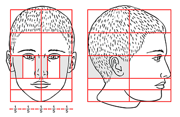 600x391 Delighted Perfect Face Template Images