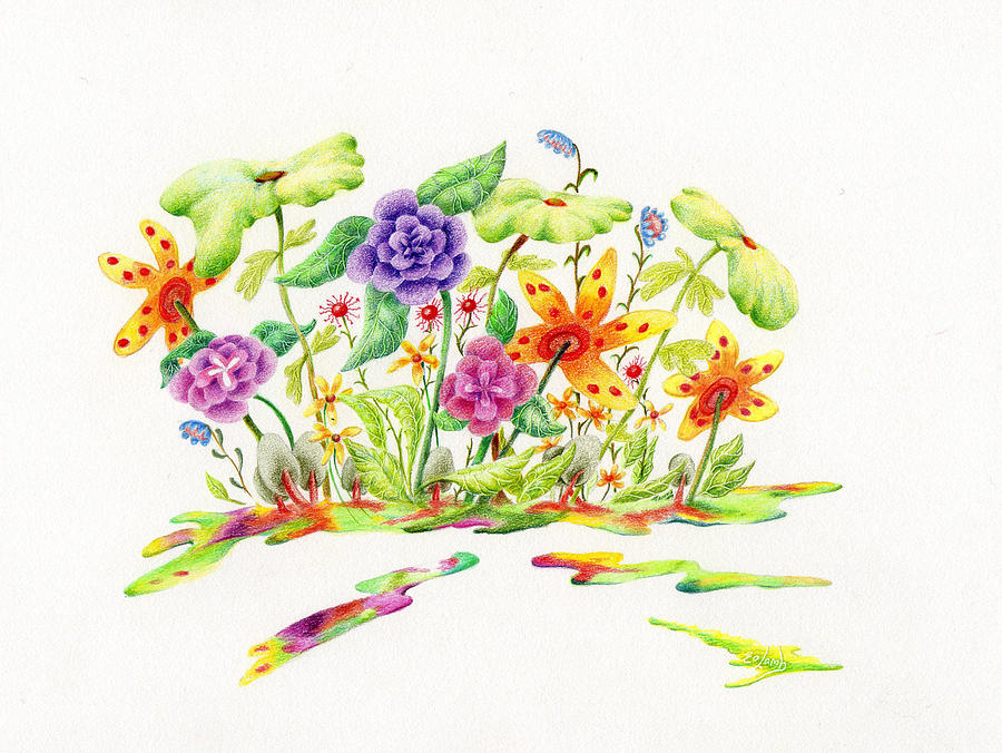 900x676 Fairy Garden Drawing By Liz Lamb