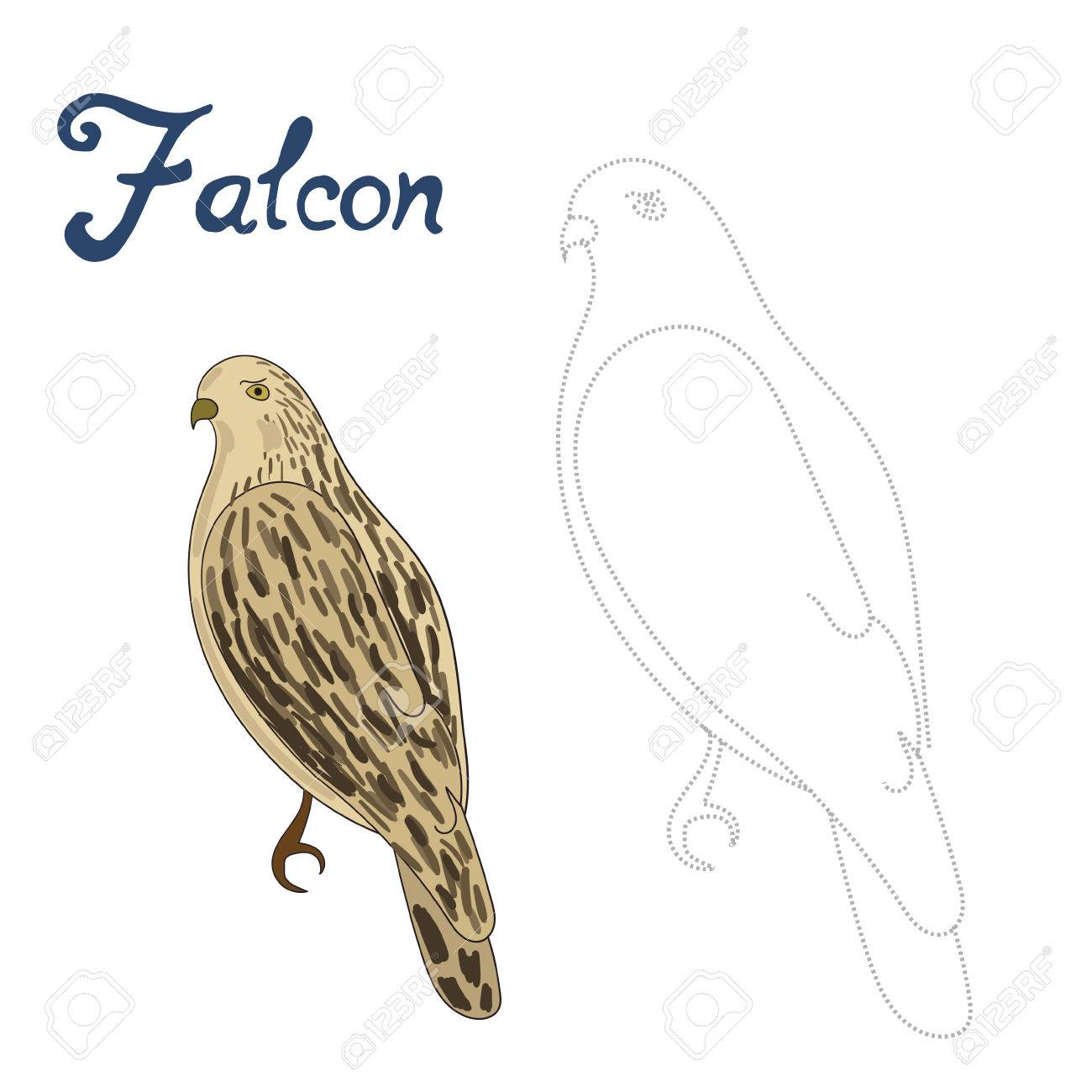 1300x1300 Educational Game Connect The Dots To Draw Falcon Bird Cartoon