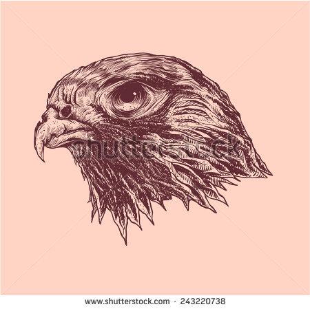 450x449 Falcon Head