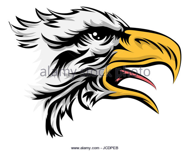 640x509 Falcon Head Black White Cut Out Stock Images Amp Pictures
