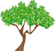 236x220 Tree Drawing