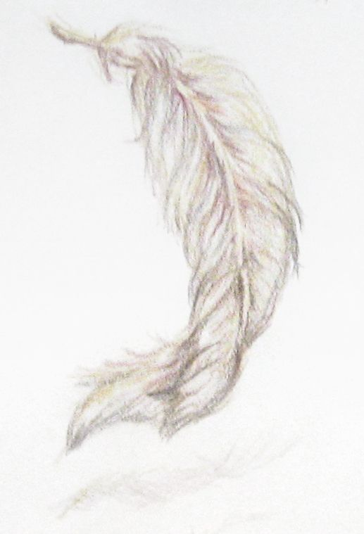 Falling Feather Drawing At Getdrawings Com Free For