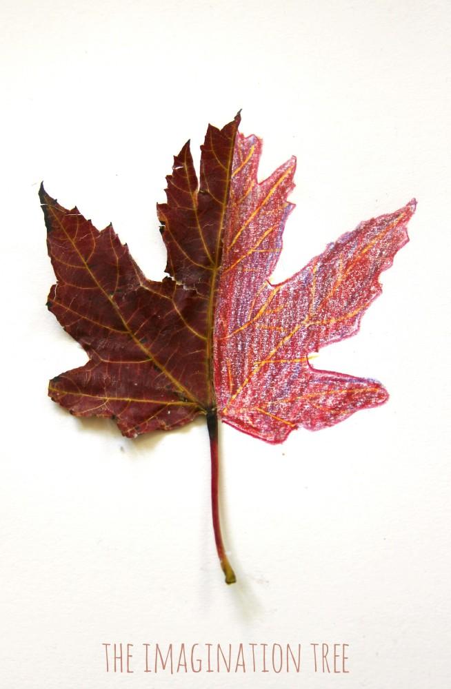 654x1000 12 Autumn Leaves Art Activities
