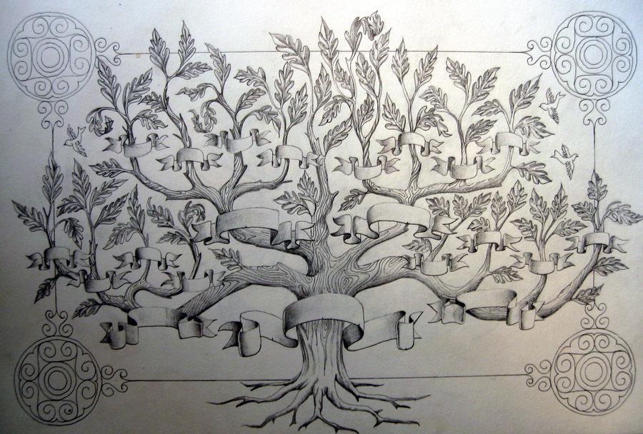 draw family trees elita aisushi co
