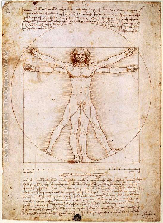 549x751 40 Most Famous Leonardo Da Vinci Paintings And Drawings Da Vinci