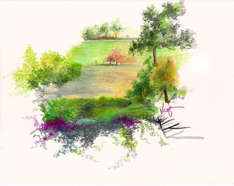 900x717 Field Drawing By William Vanya
