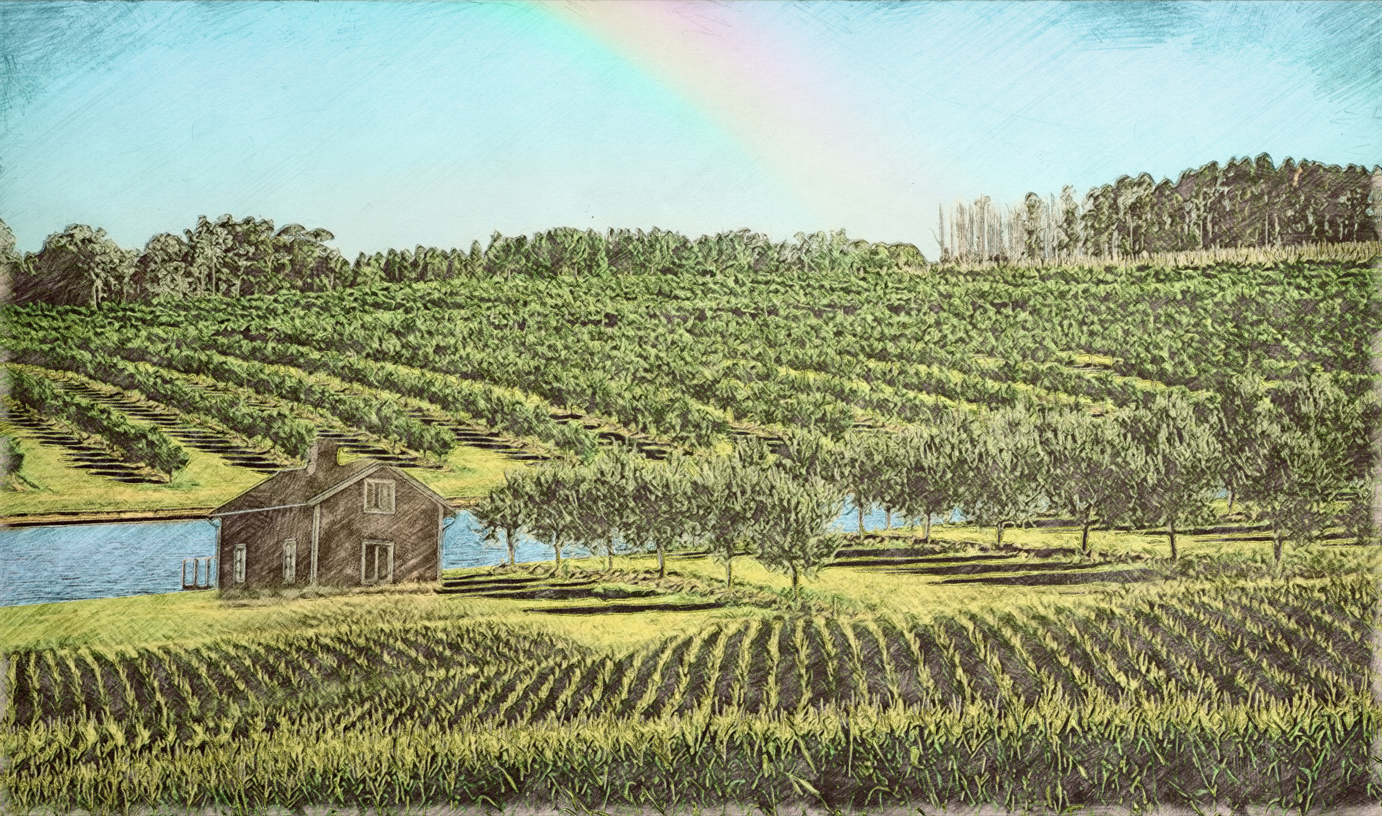 4400x2600 Eco Agriculture Color Drawing