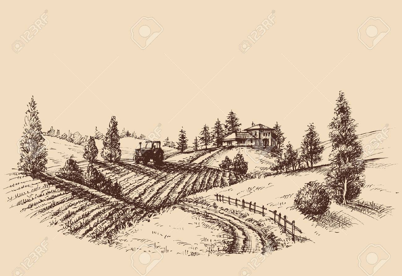 1300x892 Farm Landscape Etch, Agriculture Scene Royalty Free Cliparts