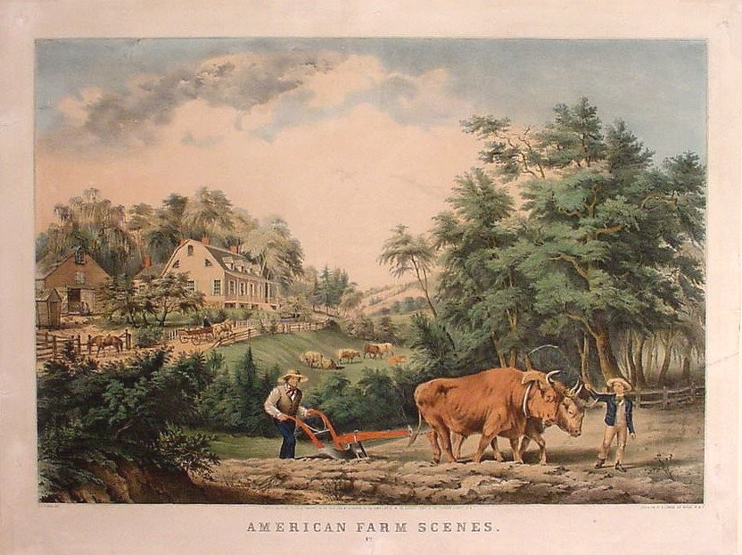 Farm Scenes Drawing At Getdrawings Com Free For Personal