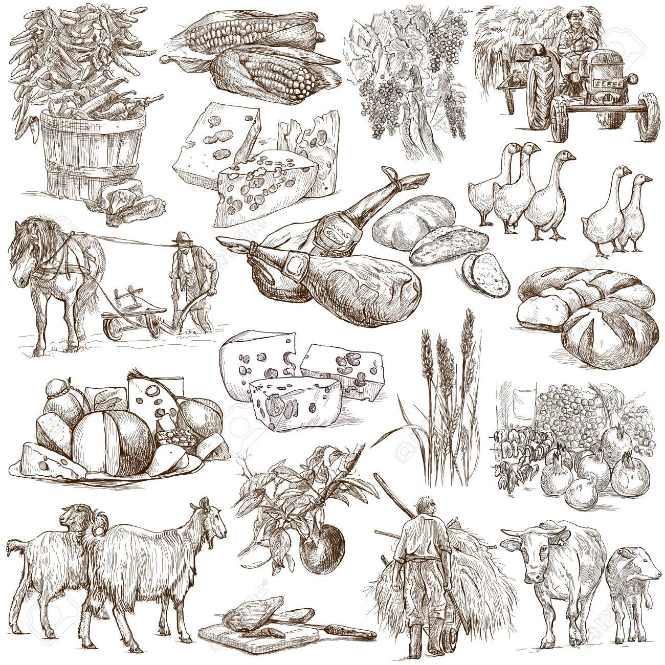 1300x1300 Agriculture.farming.life Of Farmer.agricultural Set.collection
