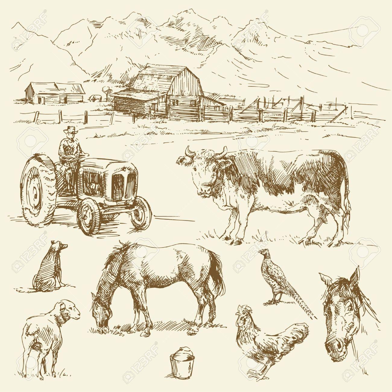1300x1300 Farm