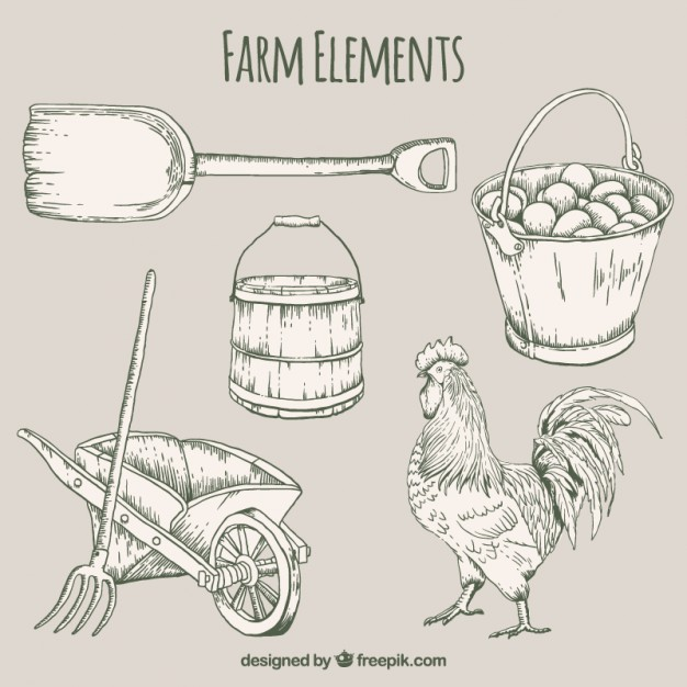 626x626 Hand Drawn Useful Farm Elements And Rooster Vector Free Download