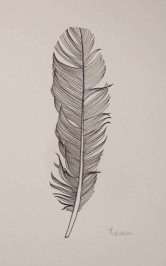 570x914 Black Feather 3