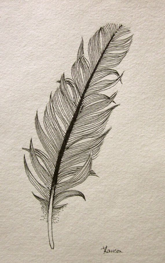 570x908 Gallery Draw Simple And Natural Drawing,
