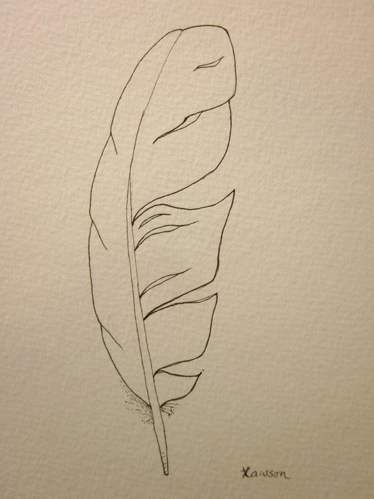 736x981 Sea Bird Feather