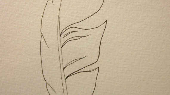 570x320 Simple Drawing Of A Feather Original Ink Feather Drawing ~ 2 Sea