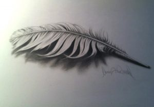 300x210 Pencil Drawing Of Peacock Feather