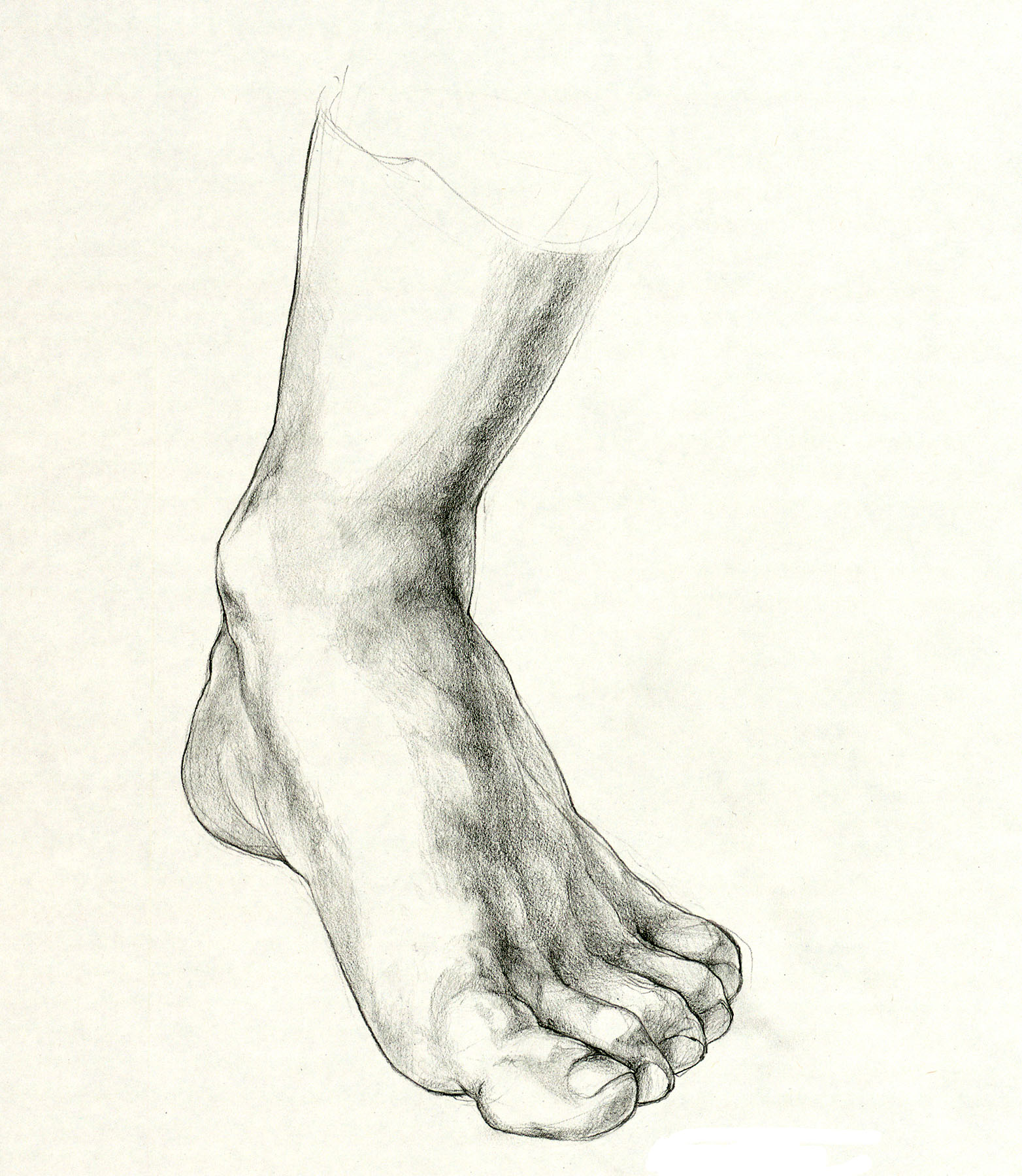 1564x1800 Drawing Of Feet