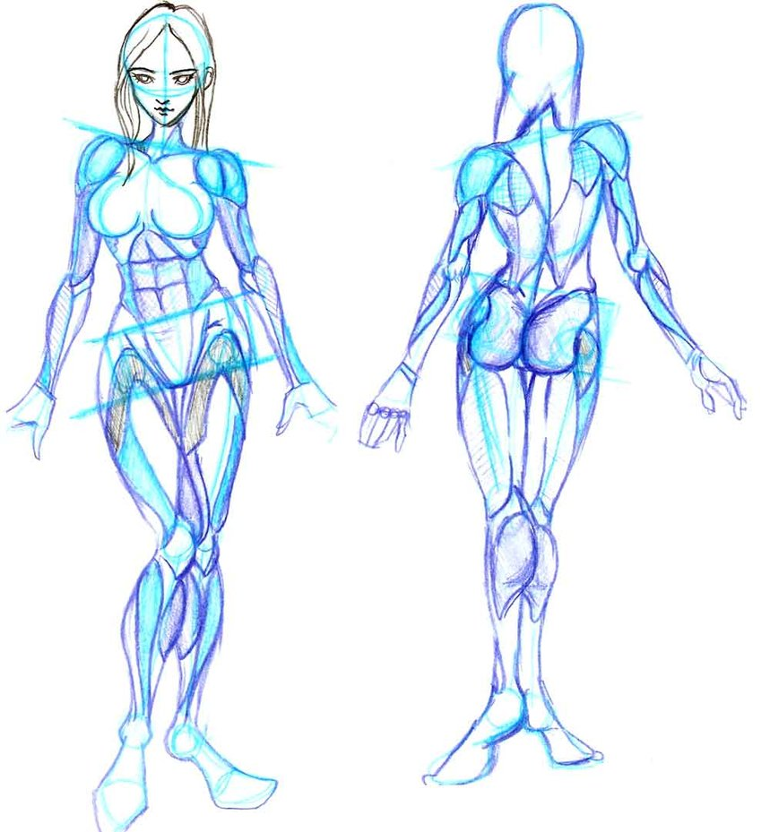 Female Body Drawing Template At Getdrawings Com Free For