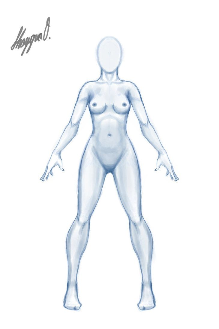 730x1095 Female Body Drawing Template Ball Jointed