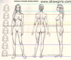 243x207 Female Body Drawing Template