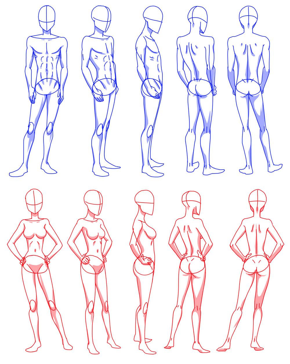 female body shape drawing at getdrawingscom free for