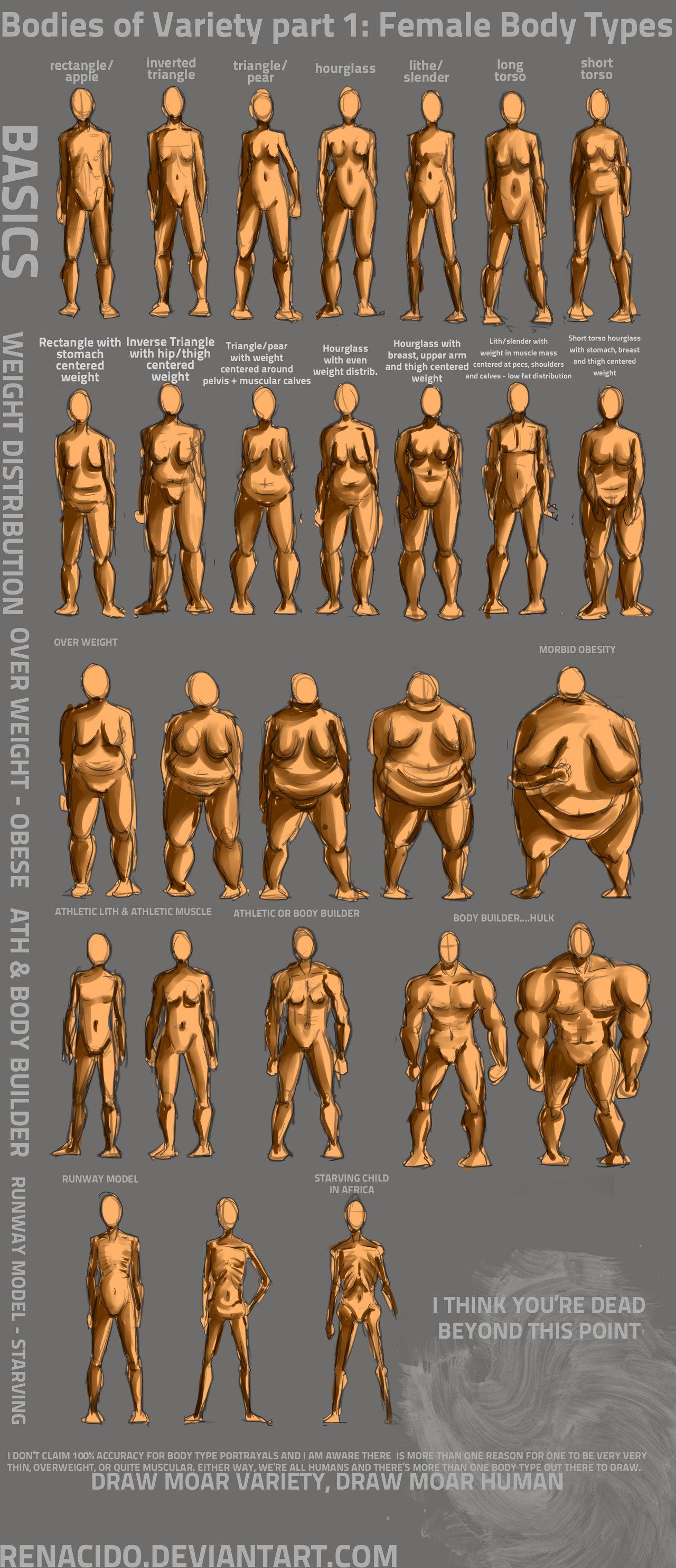 1280x2967 Bodies Of Variety Pt 1 Female Body Types By Spelledeg