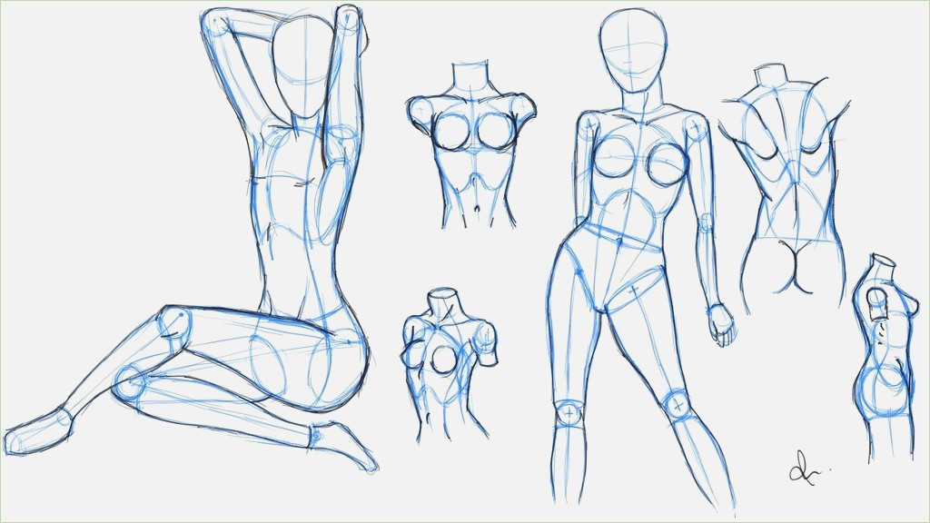 Female Leg Drawing At Getdrawings Free For Personal Use Female