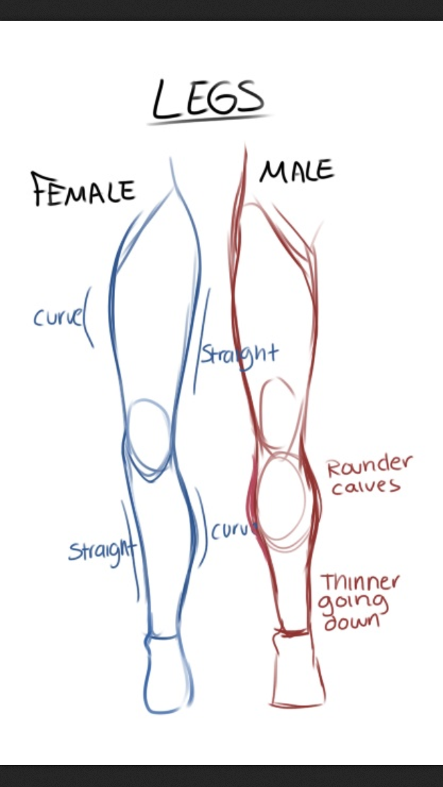 Female Legs Drawing at GetDrawings.com | Free for personal use ...