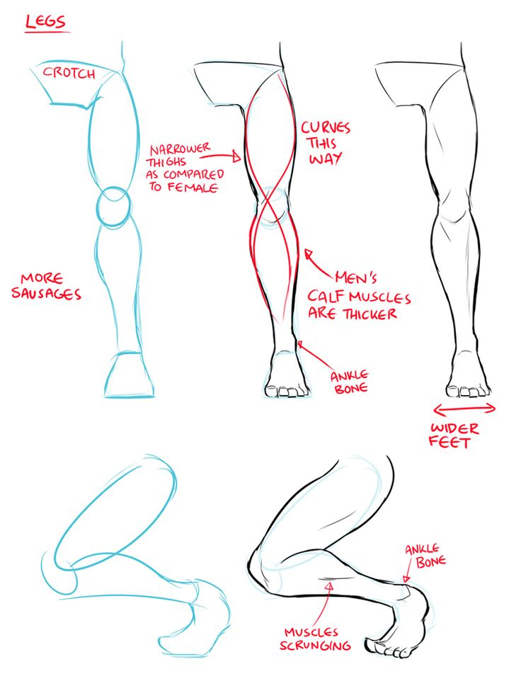 Female Legs Drawing At GetDrawings.com | Free For Personal Use Female Legs Drawing Of Your Choice