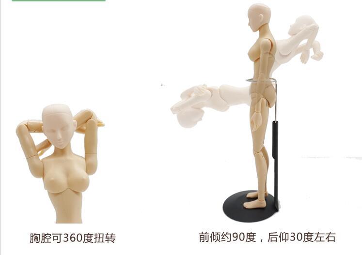 747x527 Sketch Cartoon Drawing Female Mannequin Model Plastic Massage