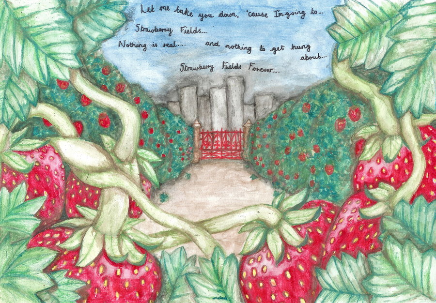 900x626 Strawberry Fields Forever By Ellemcc
