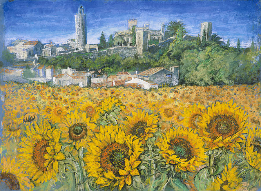 900x659 Sunflower Fields Near Pals Spain Drawing By Patricia Clements