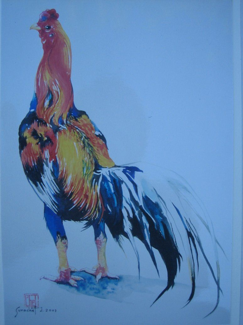 774x1032 Fighting rooster drawings Fighting Rooster By Leelathai Tatoo