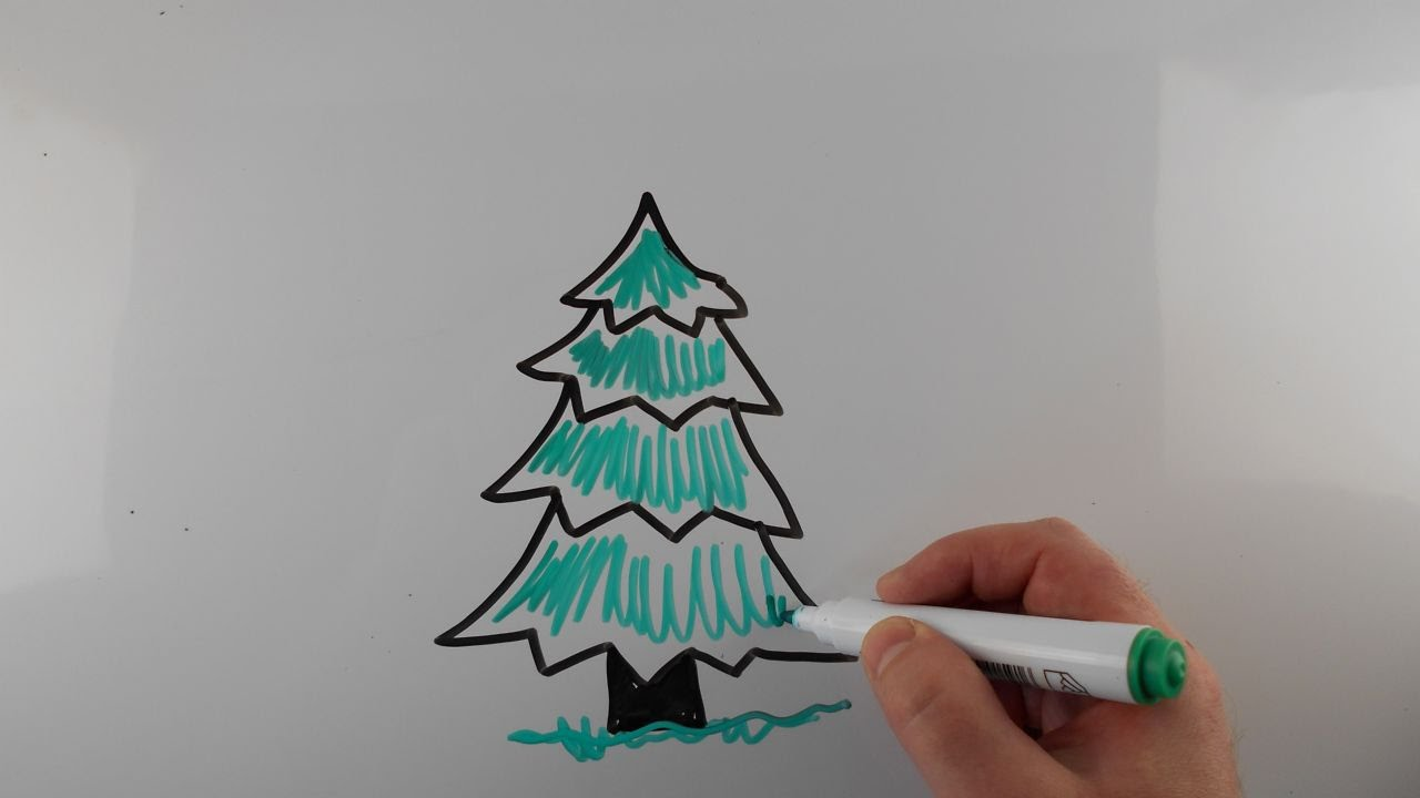 1280x720 How To Draw Fir Tree Drawing On A Whiteboard For Kids