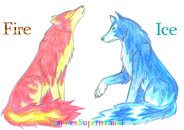 600x424 Fire And Ice Wolves D By Liannexsupernatural