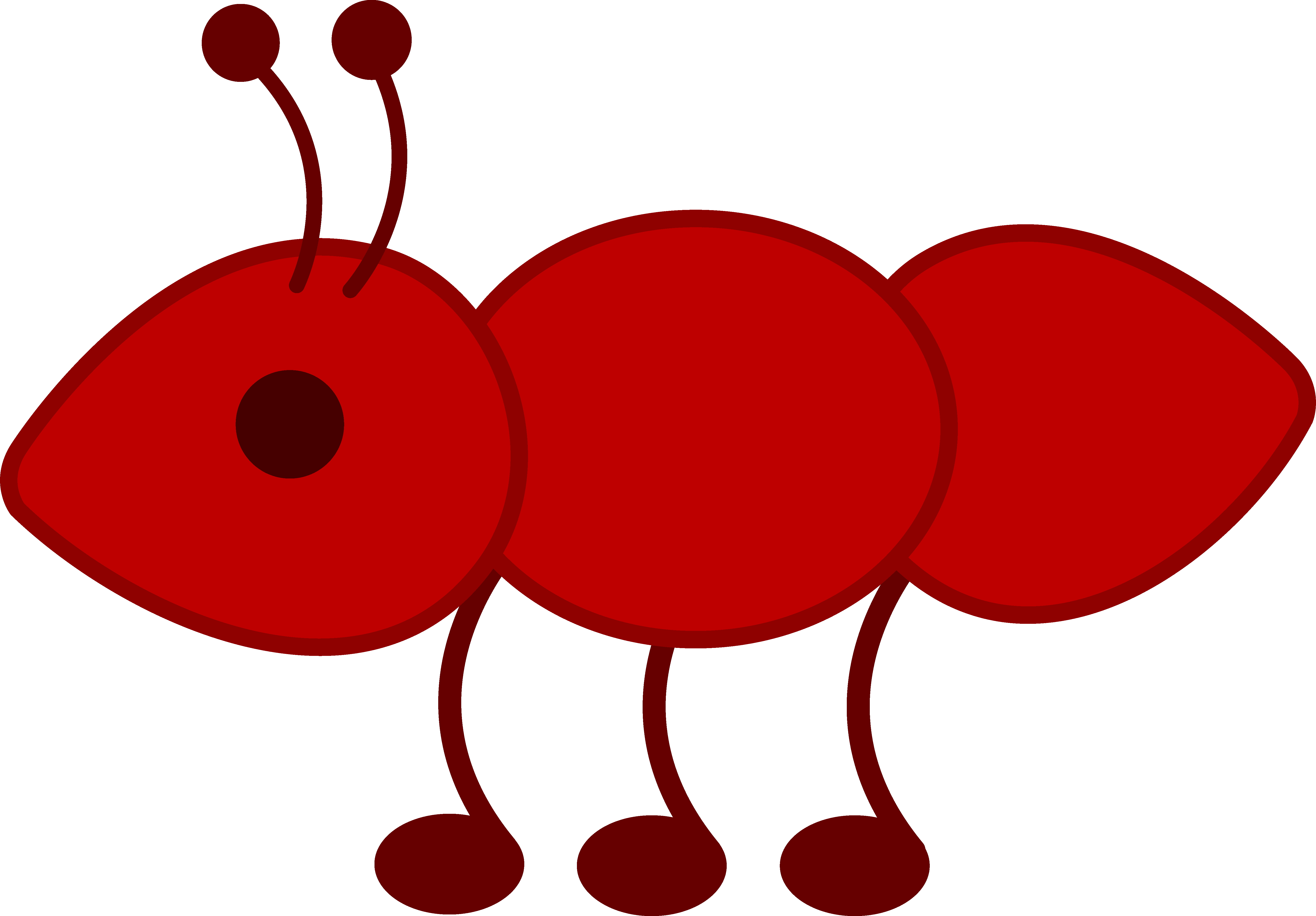 5949x4141 Little Red Ant